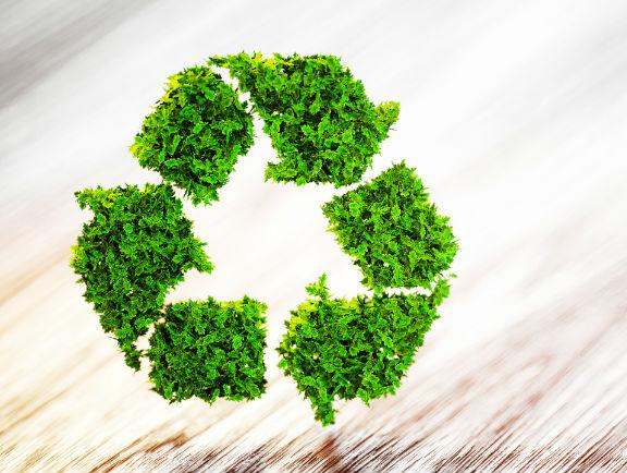 Plan de manejo de residuos en empresas
